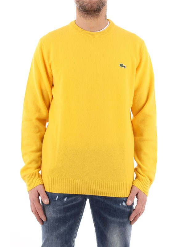 LACOSTE Pullover Wasp